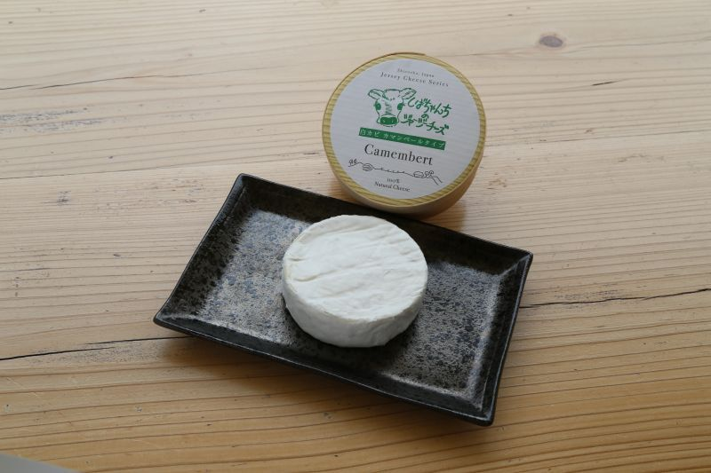 画像1: 白カビチーズ カマンベールタイプ(100g) (1)